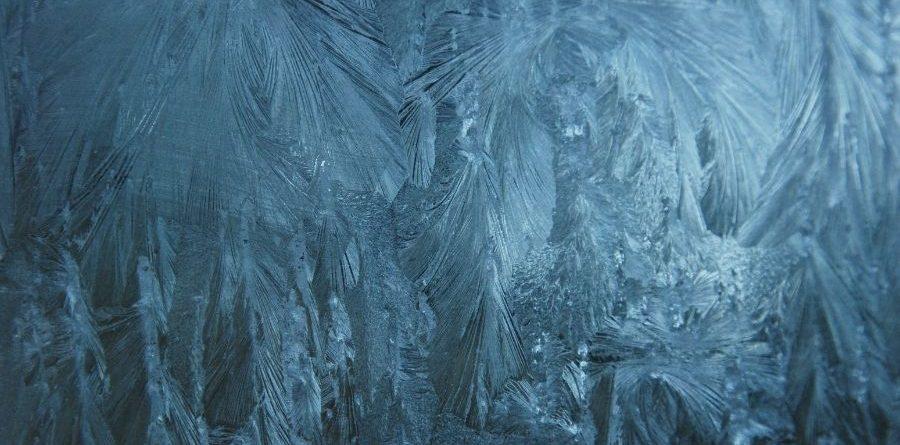 el palacio de hielo
