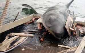 Els quatre atacs de 'Tiburón'