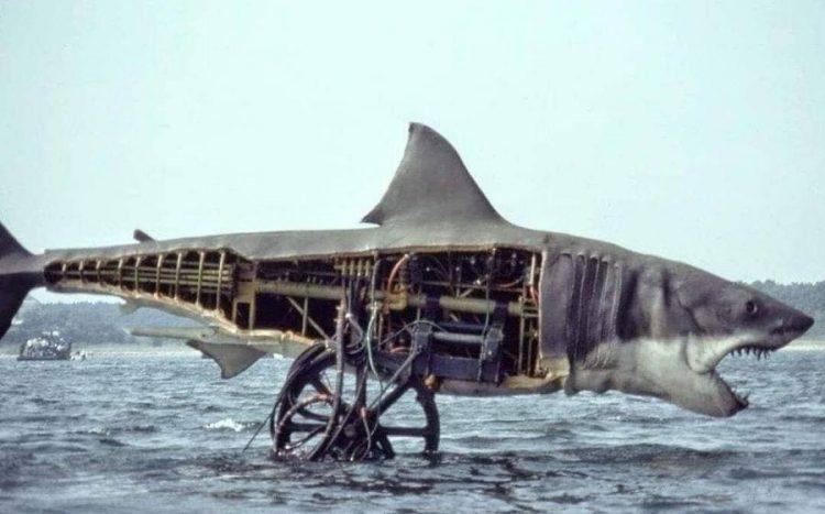 Un dels taurons mecànics utilitzats per Spielberg.